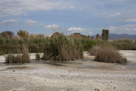desert ecosystem: Panoramica dello stagno di Molentargius - Comune di Quartu S.E., - stagione estiva