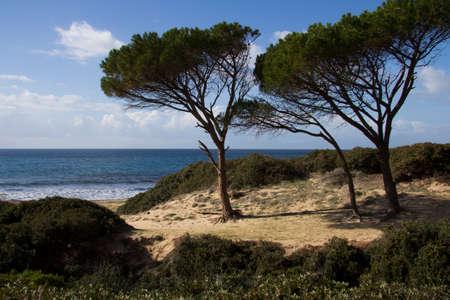 sud: CAGLIARI: Spiaggia a sud della Sardegna - Mare pintau
