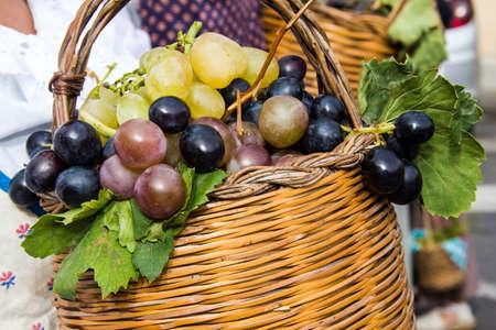 Grape Festival, in honor of SantElena celebrations - Â Sardinia