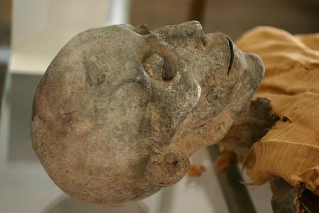 Skeleton mummy