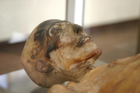 mummified: Mummy