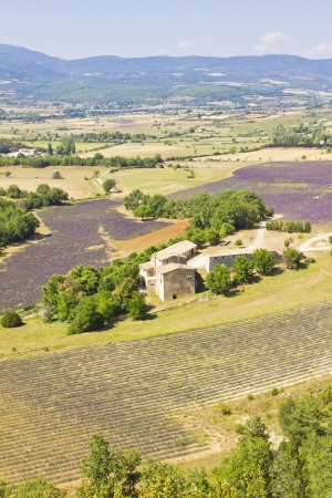 Aerial view of Provence, south of France photo