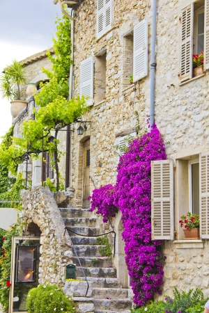 Provence, south of France photo