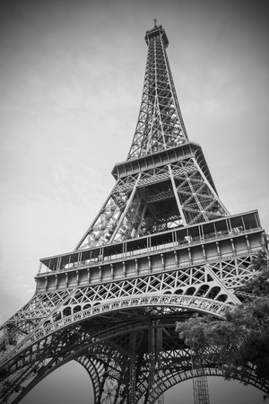 The Eiffel Tower, Paris, France photo