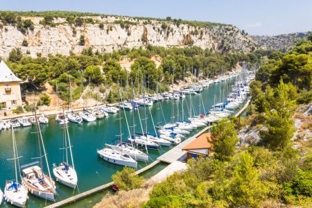 Port Pin in the calanques of Cassis, south of France photo