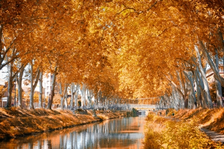 french countryside: The Canal du Midi, France