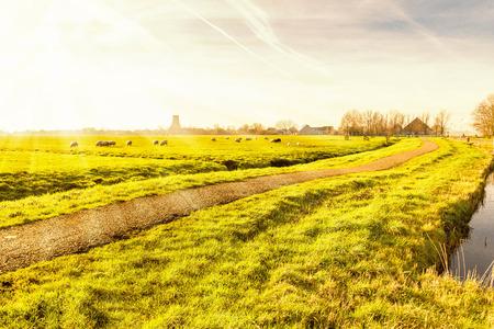 holland landscape: Rural landscape in Holland