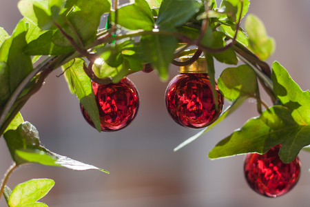 Photographer mirroring effect in red christmas balls