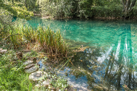 Quite section of Livenza river with transparent waters and canes, Santissima, Friuli, Italy Stock Photo