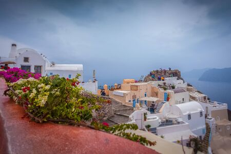 Tilt shift effect of colorful flowers and houses of Oia on a rainy day