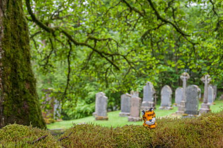 Puppet above a hedge, with blurred cemetery behind, Balquhidder, Scotland. Concept: famous and typical landscapes of Scotland, mysterious places 免版税图像