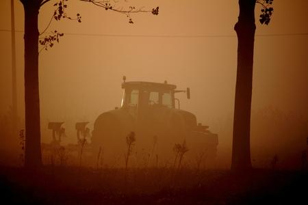 arando: arado de niebla por la ma�ana Foto de archivo