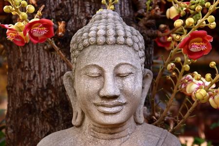 sepals: Buddha and the Bodhi tree
