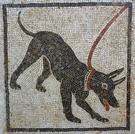 Cave Canem mosaic, Pompeii