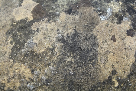 texture of concrete wall