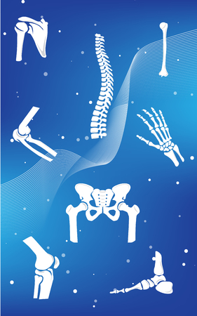 Medical infographic orthopedic anatomy. Abstract background with spine, pelvis, knee, foot, shoulder, elbow, hand, humerus bones and joints. Orthopedics medical.Blue and white. Vector illustration Illustration