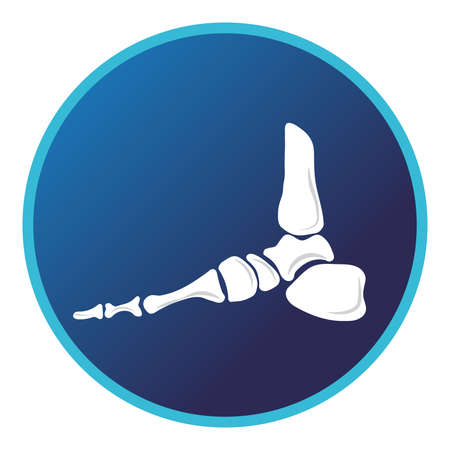 Foot bone icon . Vector flat design for radiology orthopedic research hospital for body joints, orthopedic, sport medicine, diagnostics or corrective therapy. Vector illustration Illustration