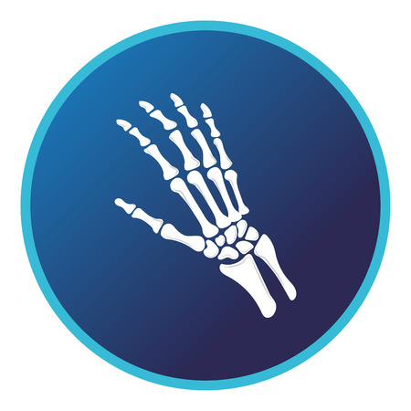 Hand bone icon . Vector flat design for radiology orthopedic research hospital for body joints, orthopedic, sport medicine, diagnostics or corrective therapy. Vector illustration Illustration