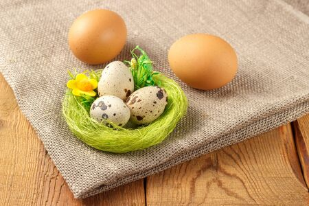 Chicken and quail eggs with a green nest on burlap and tree