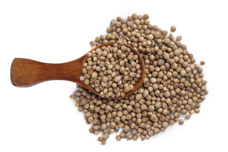 flavouring: Coriander seeds in wood spoon on white background