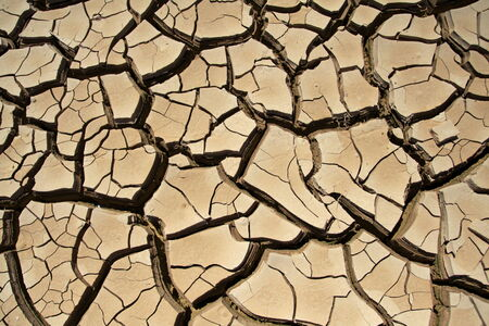 interstice: Cracked earth in the  desert