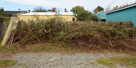 Yard work debris, tree and shrub clippings piled against fence in alley. Horizontal.