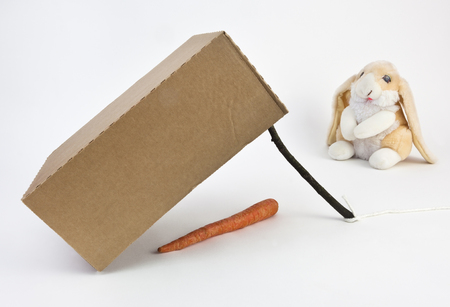 Scam phishing trap concept with carrot, box,stick and youre the innocent bunny.
