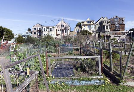 Orti della comunità di San Francisco con case e cielo blu. Archivio Fotografico - 80611693