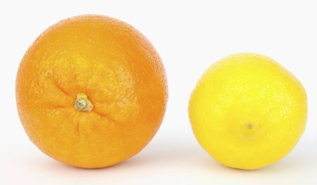 Citrus pals: the orange and the lemon. Isolated.