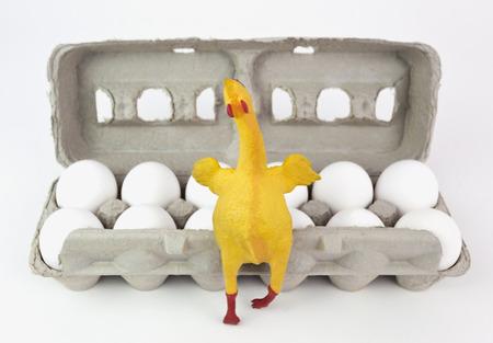 Carton of one dozen eggs with joyful rubber chicken in foreground. Focus on rubber chicken.