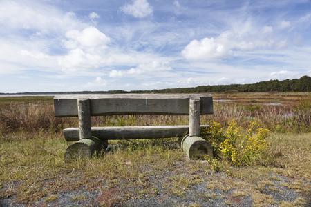wetland conservation: Rear view of bench on Assateague Island, Virginia.