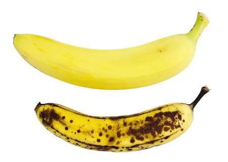 Bananas contrast: ripe and overripe. Isolated.