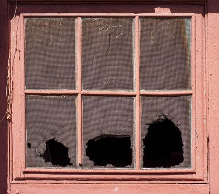 Weathered and torn metal mesh covering faded and peeling vintage garage windows.