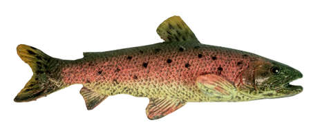 Toy model of a rainbow trout. Isolated. Stock Photo