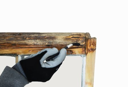 Close up of a person restoring sash windows while applying dry fix with a brush. Sash window restoration.