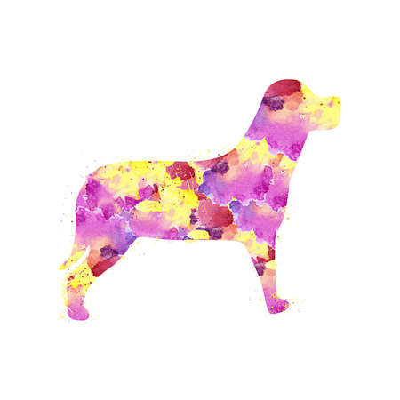 Dog with Watercolor Splash effect against clear white background.