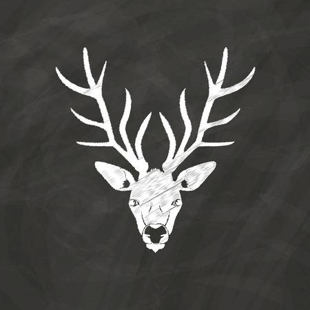 antler: reindeer head and antler sketch by chalk on blackboard