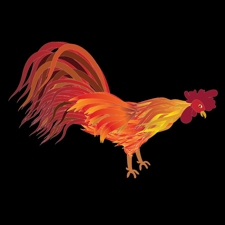 Red fiery rooster. Symbol Chinese 2017 new year. illustration for poster , greeting card , web, Illustration