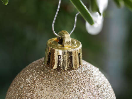 Golden Bauble hanging Down From a Branch of  Christmas Tree. Shallow Depth  Field