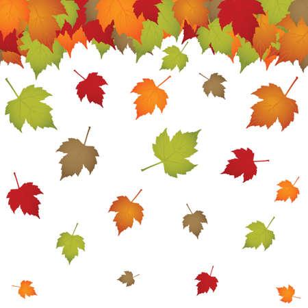 hojas de oto�o cayendo: Autumn falling on white isolated leaves