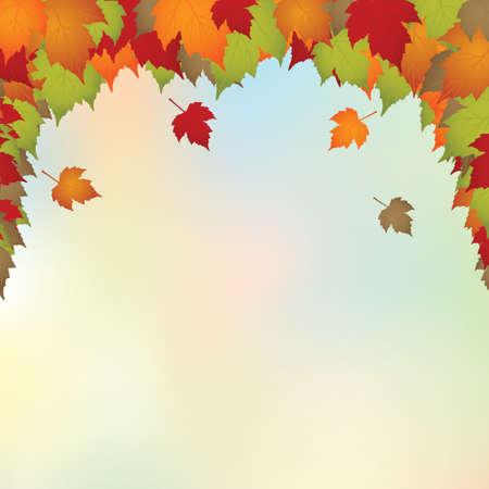 hojas de oto�o cayendo: Hermoso color oto�o deja caer