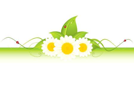 Green leaf frame illustration with flowers Illustration