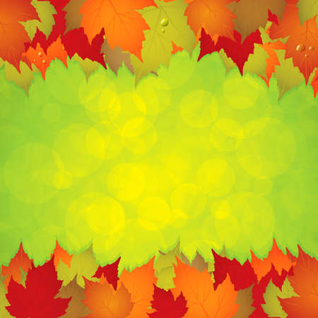 Autumn leaves frame. Stock Vector - 10036796