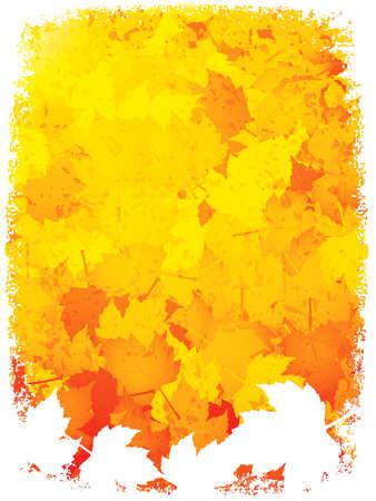 Autumn leaves frame Stock Vector - 10307507