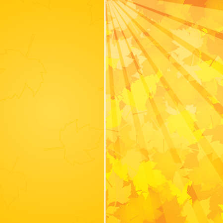 Autumnal leaf of maple and sunlight background Stock Vector - 10736301