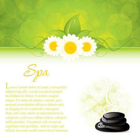 massage therapie: Achtergrond met spa stenen en witte bloemen Stock Illustratie
