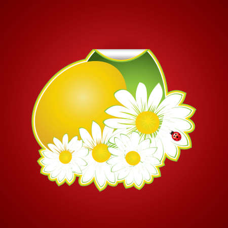 Paper easter egg sticker on red background Vector