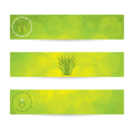 aloe vera background: Aloe Vera banners