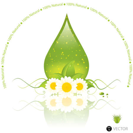 aromatherapy oil: Aloe Vera drop isolated on white Illustration