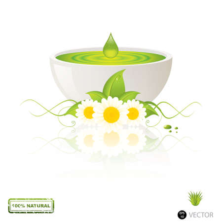 Aloe Vera gel drop Alternative medicine Stock Vector - 13885313